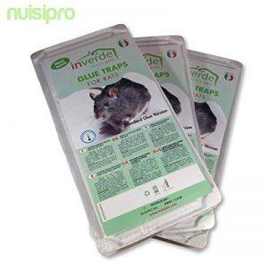 NUISIPRO Piège à colle, 3 lots = 6 plaques plastique de glu anti rat et anti souris de la marque NUISIPRO image 0 produit