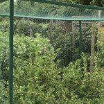 Nutley's Kitchen Gardens FLE09BN10 Filet anti-oiseaux tissé Vert 10 x 8m de la marque Nutley's Kitchen Gardens image 4 produit