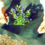 Nutley's Lot de weedban 50 gms 1 m x 10 m Tissu anti mauvaises herbes Noir de la marque Nutley's image 3 produit