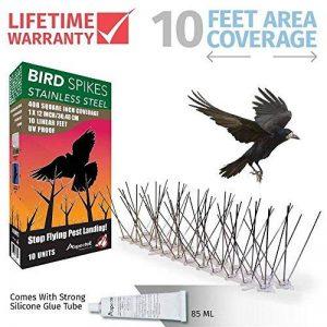 pic anti pigeon pour gouttière TOP 4 image 0 produit