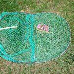 piège à pigeon TOP 10 image 2 produit
