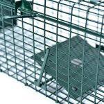 Piège à souris vivants en fil de fer 53 x 19 x 19 cm - 2 entrées, encadrement renforcé avec revêtement par poudre et plaque anti-mosures - Prête à son usage inmédiat de la marque PROHEIM image 4 produit