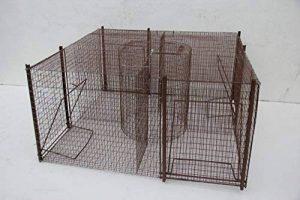 piège cage capture pigeons, pies 5 compartiments fabrication Française de la marque TRAPGALLIER image 0 produit