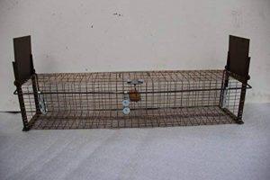 piège cage capture fouines de la marque boite à oeuf image 0 produit
