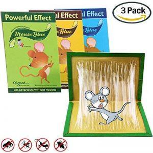 Piège à Colle Pour Rats / Souris Pieges à Glue Rats Pièges à Rats Et Souris Très Efficace Tueur d'insectes Respecte l'environnement Inoffensif 3PC de la marque Aitos image 0 produit