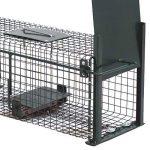 Piège de capture infaillible - Cage - Pour petits animaux: lapins, rats, rongeurs - 50x18x18cm - Avec deux entrées 5006 de la marque Moorland image 3 produit