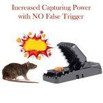 piéger un rat TOP 13 image 3 produit