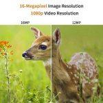 pièges animaux TOP 3 image 2 produit