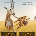 pièges animaux TOP 9 image 2 produit