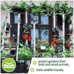 plante anti pigeon TOP 1 image 2 produit