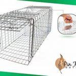 pliable, galvanisé, taille Medium (80cm) Live Catch Humane Piège à Animal avec dispositif de sécurité et un accès facile à amorce et dégagement de porte de la marque Pin Feather Outdoors image 3 produit