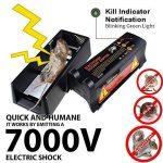 poison à rat efficace TOP 11 image 2 produit