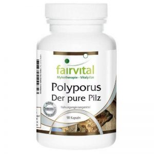Polyporus - le champignon pur - Polyporus umbellatus poudre de champignon - 90 gélules végétariennes de la marque fairvital image 0 produit