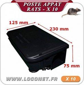 Poste d'appâtage pour rats sécurisés lot de 10 de la marque dt-groupe image 0 produit