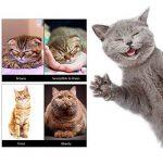 pour chasser les souris TOP 8 image 2 produit