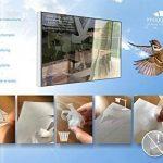 pour faire peur aux oiseaux TOP 1 image 3 produit
