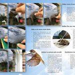 pour faire peur aux oiseaux TOP 1 image 4 produit