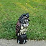épouvantail pour oiseaux TOP 8 image 2 produit