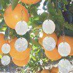 PrimeMatik - Disques Réfléchissants Répulsifs pour Oiseaux Répulseur D'oiseaux Épouvantail 8-Pack de la marque PrimeMatik.com image 3 produit