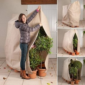 ProBache - Housse d'hivernage pour plante et arbuste 120 x 180 cm de la marque Probache image 0 produit