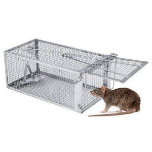 produit anti rat professionnel TOP 8 image 0 produit