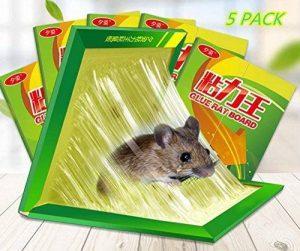produit anti souris professionnel TOP 12 image 0 produit