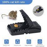 produit contre les rats TOP 9 image 3 produit