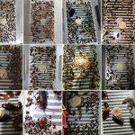 produit naturel contre fourmis maison TOP 5 image 2 produit