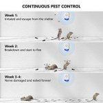 produit naturel contre fourmis maison TOP 8 image 3 produit