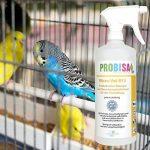 Produit Nettoyant et Éliminateur d'odeurs Bio pour Animaux, Chiens, Chats et autres Probisa Micro Vet 813 – Spray désodorisant pour intérieur avec animal, niche, litière, cage… - Concentré de 50 ml de la marque PROBISA image 3 produit