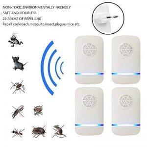 produit pour tuer les fourmis TOP 11 image 0 produit
