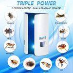 produit pour tuer les fourmis TOP 6 image 1 produit