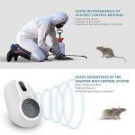produit pour tuer les rats TOP 3 image 3 produit