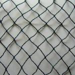protection contre oiseaux TOP 3 image 1 produit