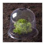protection jeunes plants TOP 2 image 1 produit