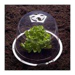 protection jeunes plants TOP 2 image 3 produit