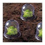 protection jeunes plants TOP 2 image 4 produit