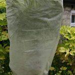 protection plantes hiver contre le gel TOP 0 image 2 produit