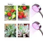 protection végétaux hiver TOP 10 image 2 produit