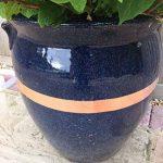 protéger les plantes en pot du froid TOP 0 image 4 produit