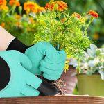 protéger les plantes en pot du froid TOP 12 image 1 produit