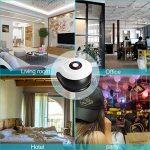 punaise maison TOP 8 image 3 produit