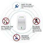 repousser les souris TOP 5 image 2 produit