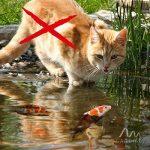 Répulsif Ultrason Solaire anti-chats, chiens et oiseaux | Fréquence Réglable | Repeller pour éloigner les animaux nuisibles - Gardigo de la marque Gardigo image 5 produit