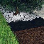 ROLLS & ROLLS Bâche de Paillage Tissu Non tessutoi Rouleau Anti Sangle Polypropylène avec Stabilisation Élevée Contre Les Rayons UV, 100GR/m² Noir. de la marque ROLLS & ROLLS image 2 produit