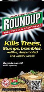 Roundup Dévitalisant de souche et racine d'arbre 250ml de la marque Roundup image 0 produit
