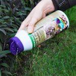 répulsif chat plante TOP 0 image 2 produit