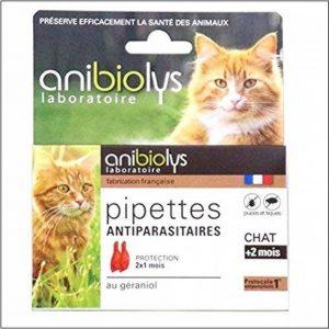 répulsif chat plante TOP 1 image 0 produit
