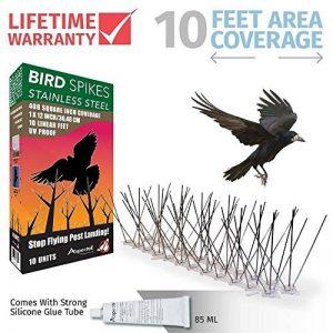 répulsif oiseaux toiture TOP 5 image 0 produit