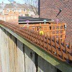 répulsif pigeon balcon TOP 3 image 2 produit